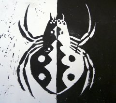 insekten04.jpg